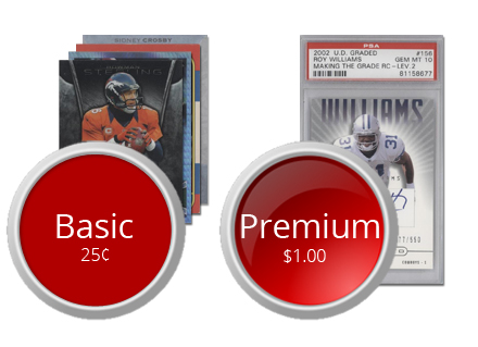 blog pic-basic vs premium1