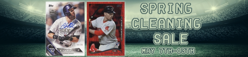Spring Cleaning Blog Banner